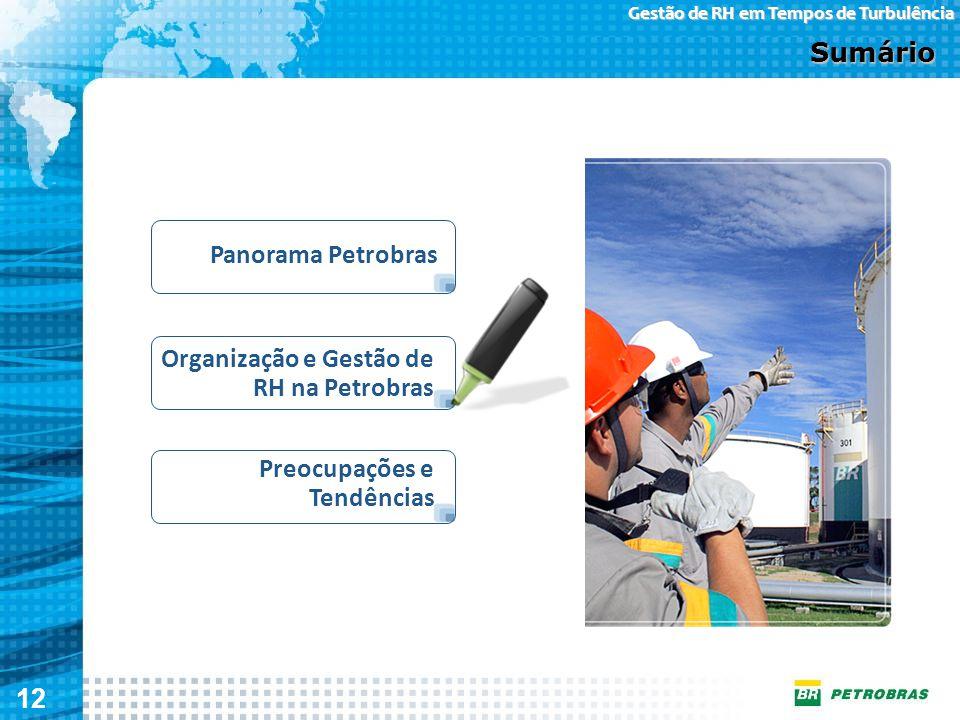 12 Gestão de RH em Tempos de Turbulência Organização e Gestão de RH na Petrobras Sumário Panorama Petrobras Preocupações e Tendências
