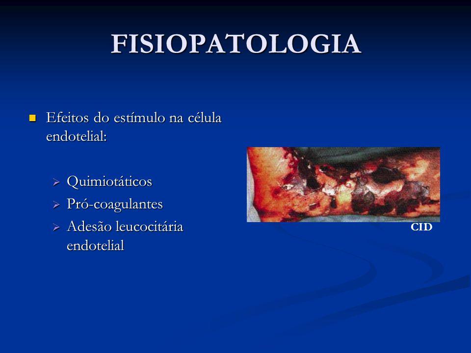 FISIOPATOLOGIA Efeitos do estímulo na célula endotelial: Efeitos do estímulo na célula endotelial:  Quimiotáticos  Pró-coagulantes  Adesão leucocit