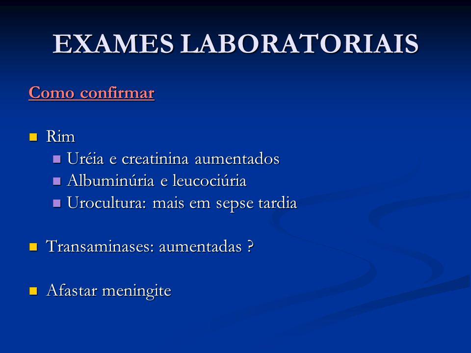 EXAMES LABORATORIAIS Como confirmar Rim Rim Uréia e creatinina aumentados Uréia e creatinina aumentados Albuminúria e leucociúria Albuminúria e leucoc