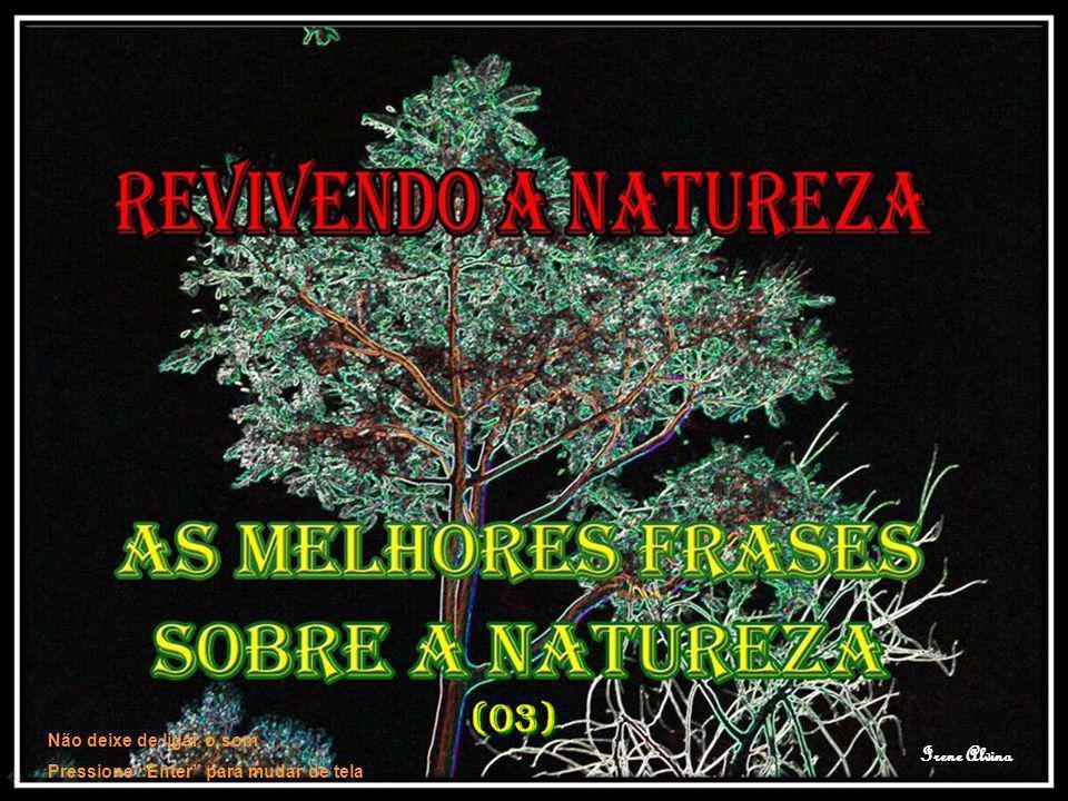 A beleza da natureza é o carinhoso sorriso de Cristo, mostrado através da matéria (G.K.
