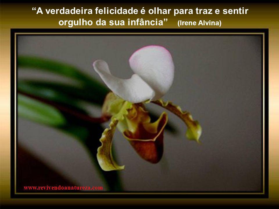 """""""A beleza da natureza é o carinhoso sorriso de Cristo, mostrado através da matéria"""" (G.K. Chesterton) www.revivendoanatureza.com"""