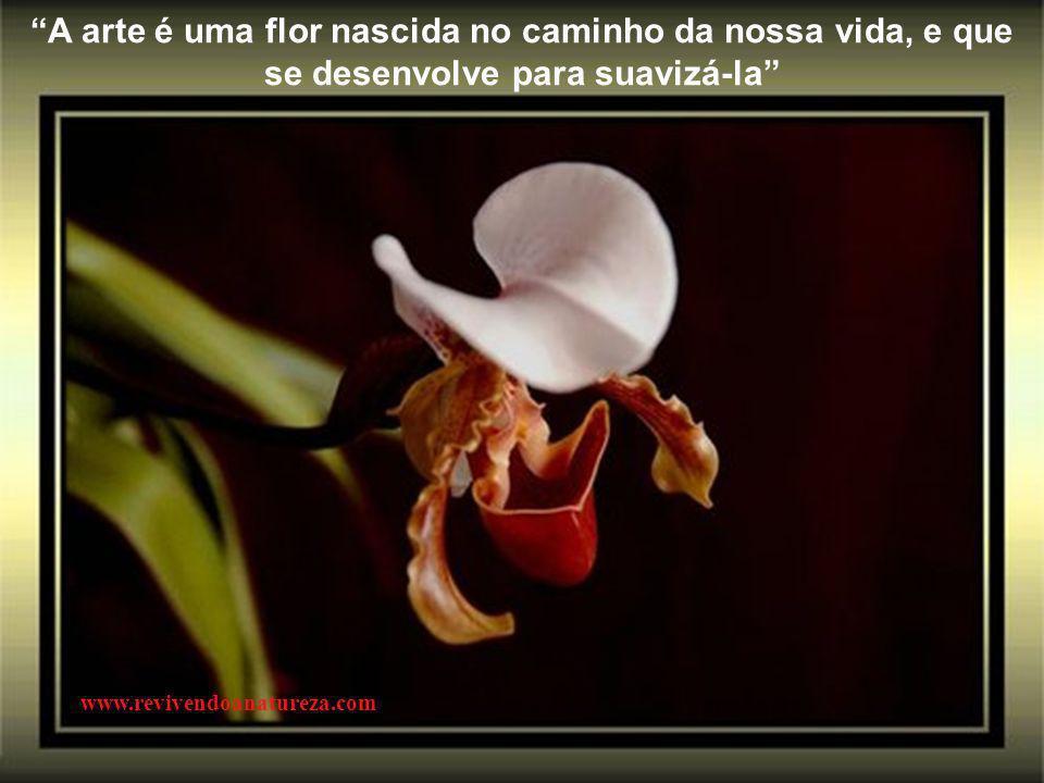 A arte é uma flor nascida no caminho da nossa vida, e que se desenvolve para suavizá-la www.revivendoanatureza.com