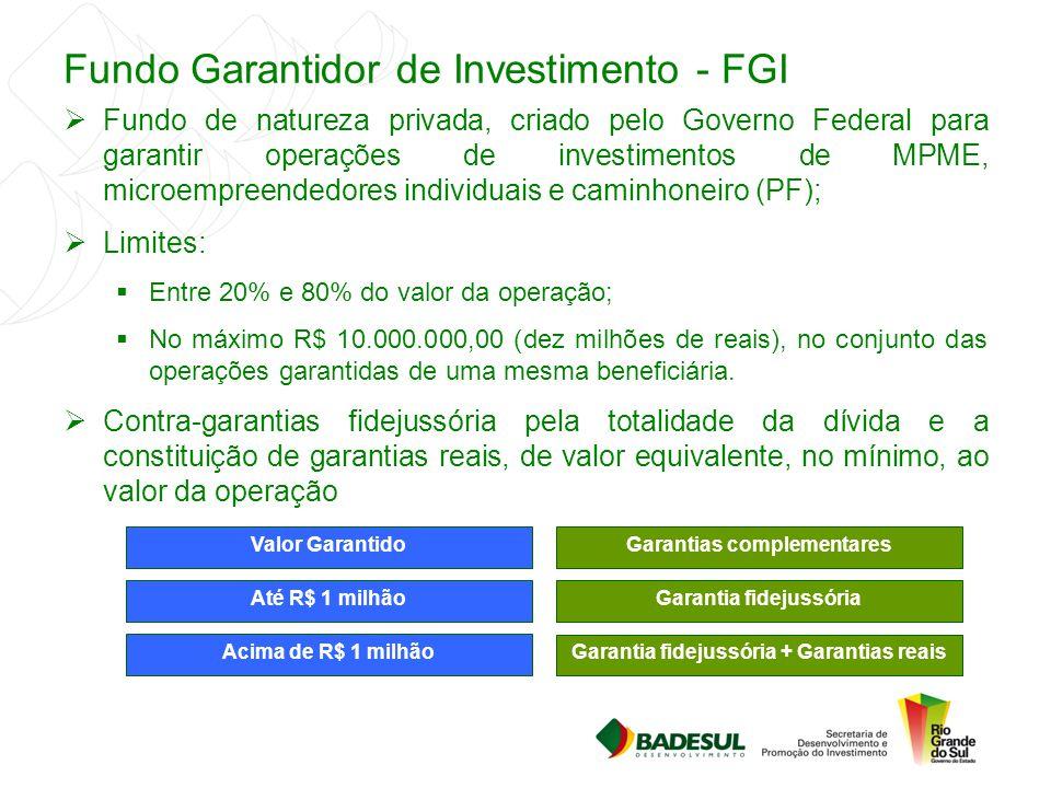 Fundo Garantidor de Investimento - FGI  Fundo de natureza privada, criado pelo Governo Federal para garantir operações de investimentos de MPME, micr