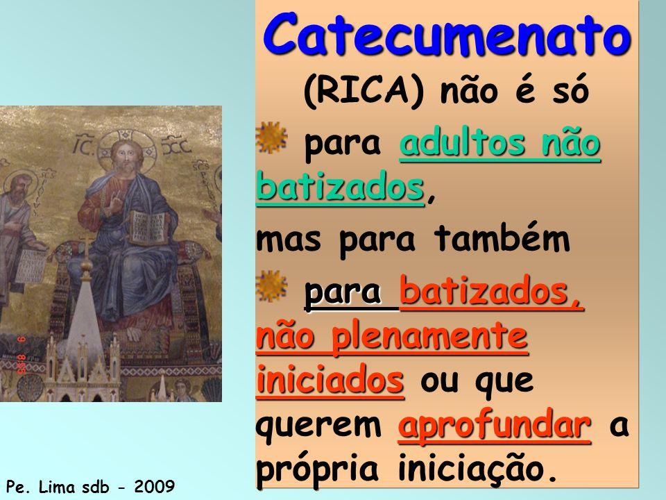 14 Catecumenato Catecumenato (RICA) não é só adultos não batizados para adultos não batizados, mas para também para batizados, não plenamente iniciado