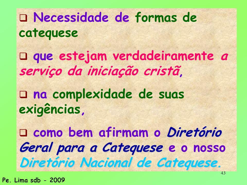 43  Necessidade de formas de catequese  que estejam verdadeiramente a serviço da iniciação cristã,  na complexidade de suas exigências, Diretório G