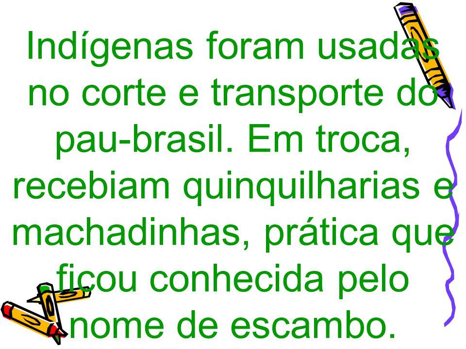 Indígenas foram usadas no corte e transporte do pau-brasil. Em troca, recebiam quinquilharias e machadinhas, prática que ficou conhecida pelo nome de