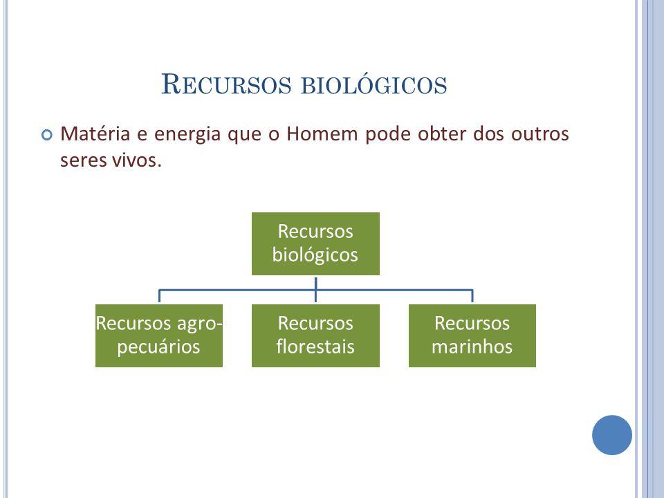 R ECURSOS BIOLÓGICOS Matéria e energia que o Homem pode obter dos outros seres vivos. Recursos biológicos Recursos agro- pecuários Recursos florestais