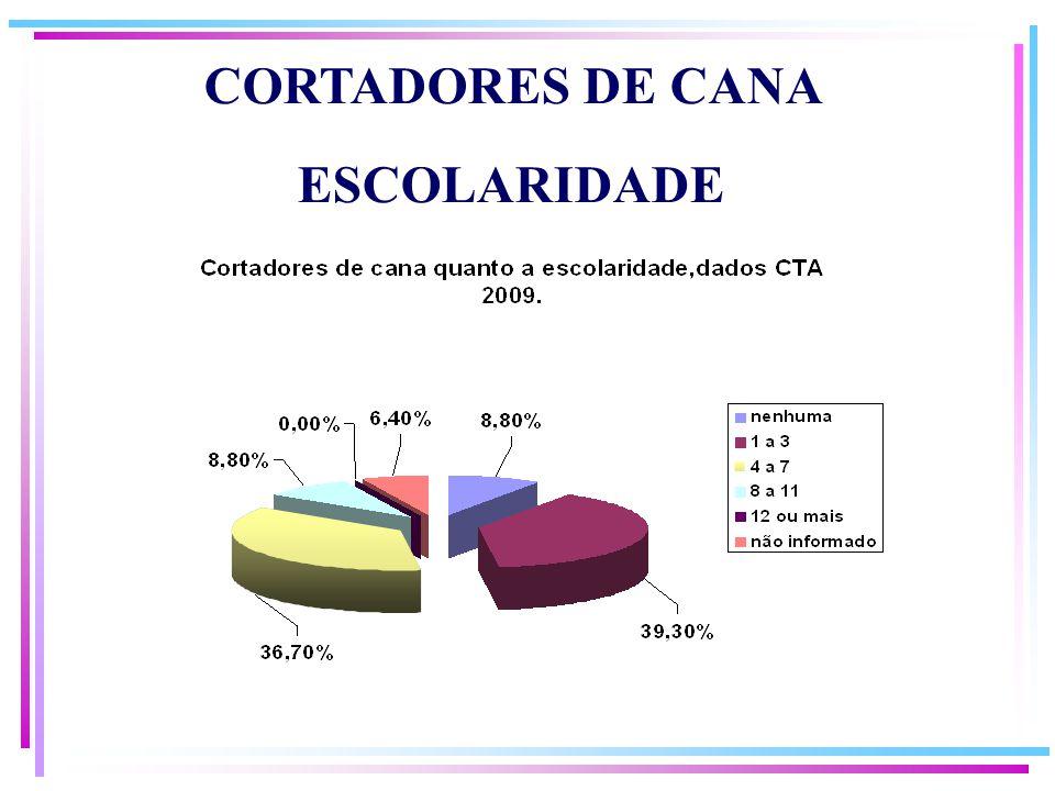 ESCOLARIDADE CORTADORES DE CANA