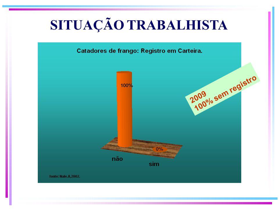 2009 100% sem registro SITUAÇÃO TRABALHISTA