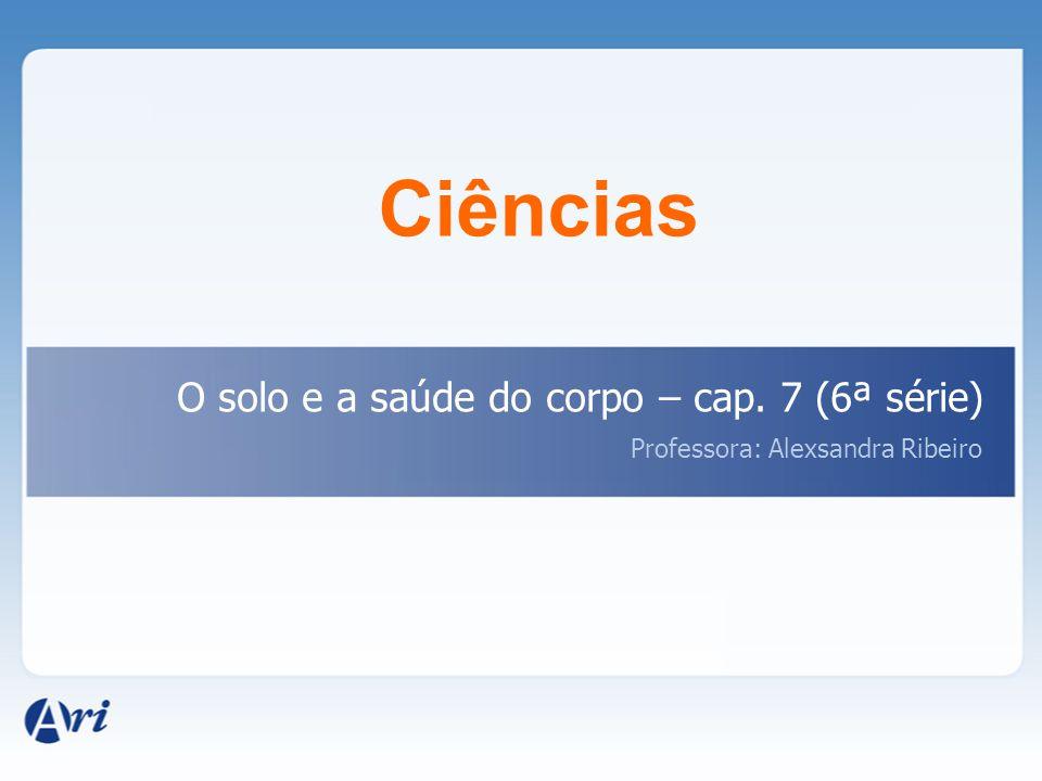Ciências O solo e a saúde do corpo – cap. 7 (6ª série) Professora: Alexsandra Ribeiro