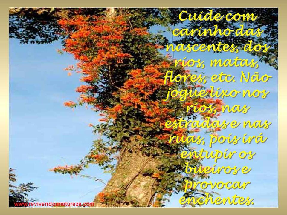 www.revivendoanatureza.com Cuide com carinho das nascentes, dos rios, matas, flores, etc. Não jogue lixo nos rios, nas estradas e nas ruas, pois irá e