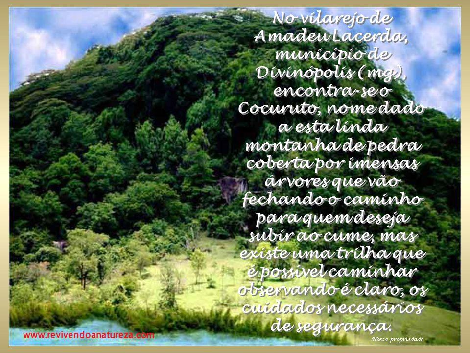 www.revivendoanatureza.com No vilarejo de Amadeu Lacerda, município de Divinópolis (mg), encontra-se o Cocuruto, nome dado a esta linda montanha de pe