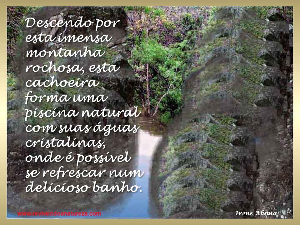 www.revivendoanatureza.com O que você fizer para a terra, estará fazendo para si próprio.
