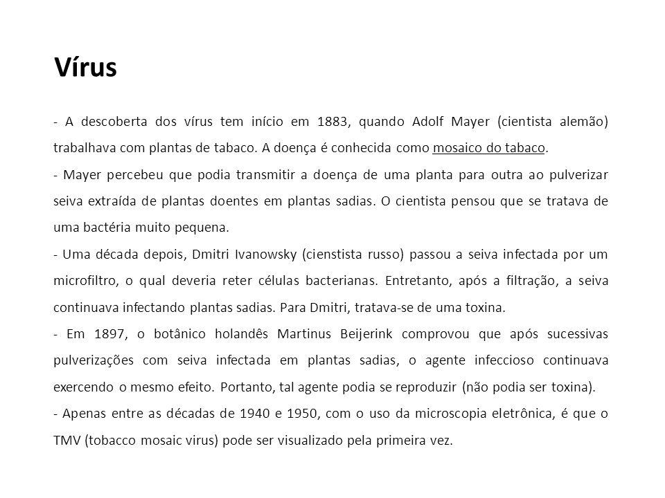 Vírus - A descoberta dos vírus tem início em 1883, quando Adolf Mayer (cientista alemão) trabalhava com plantas de tabaco. A doença é conhecida como m