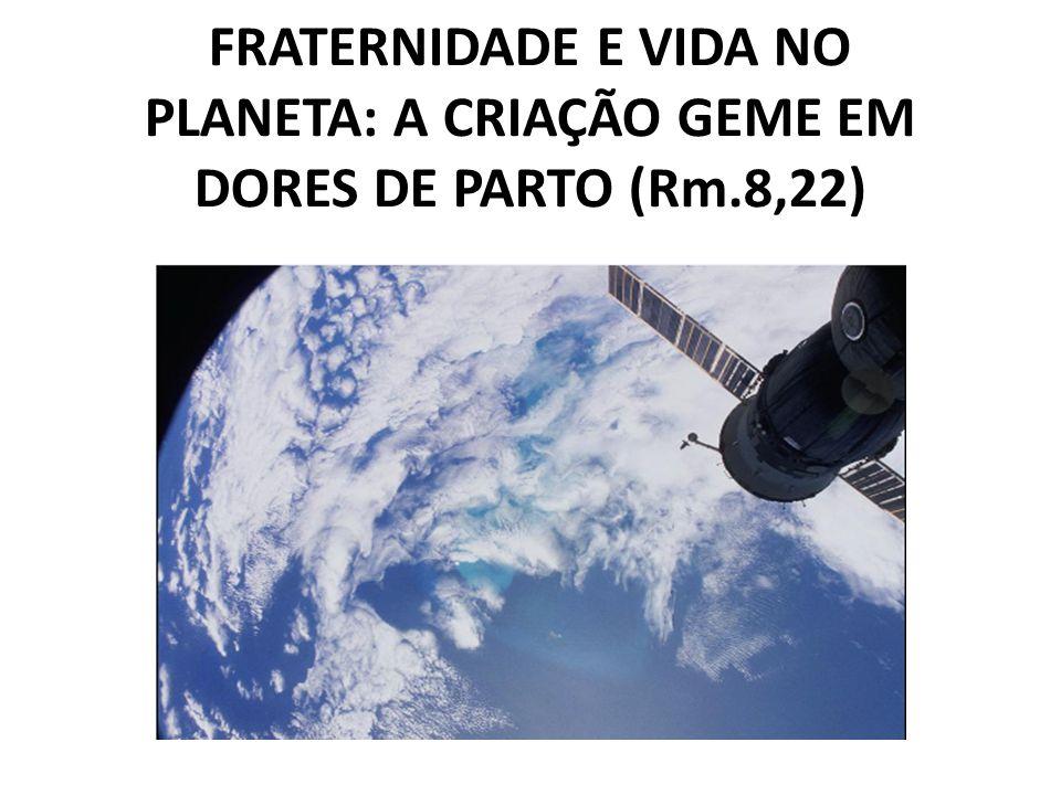 FRATERNIDADE E VIDA NO PLANETA: A CRIAÇÃO GEME EM DORES DE PARTO (Rm.8,22)