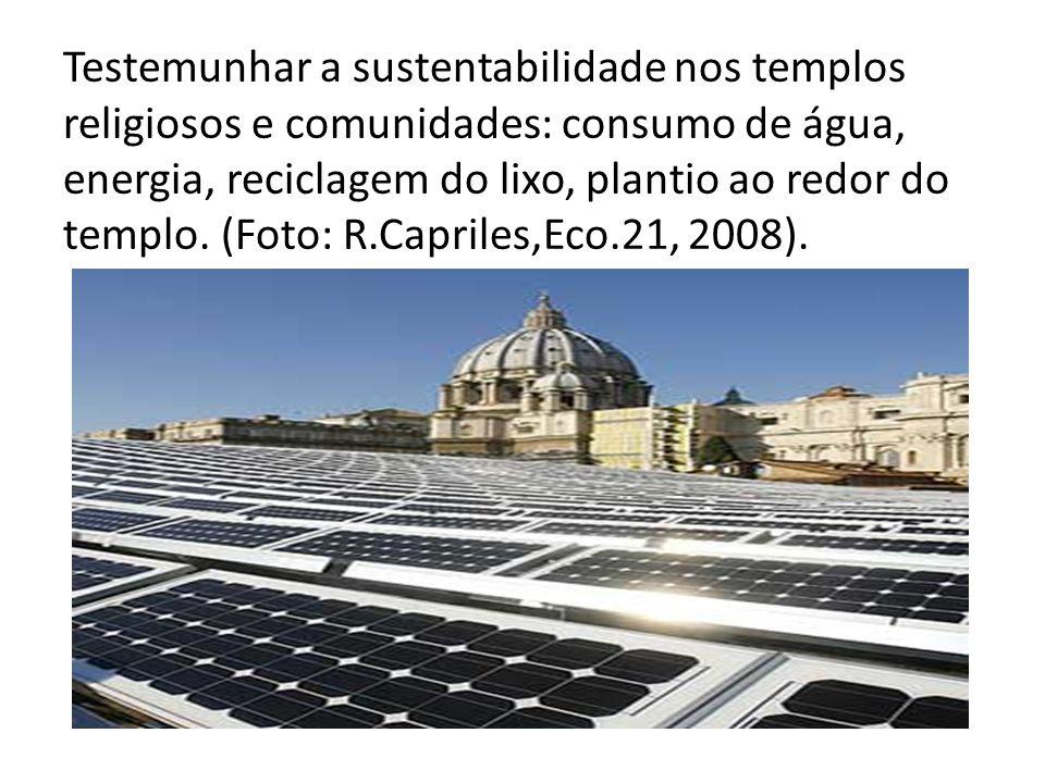 Testemunhar a sustentabilidade nos templos religiosos e comunidades: consumo de água, energia, reciclagem do lixo, plantio ao redor do templo. (Foto: