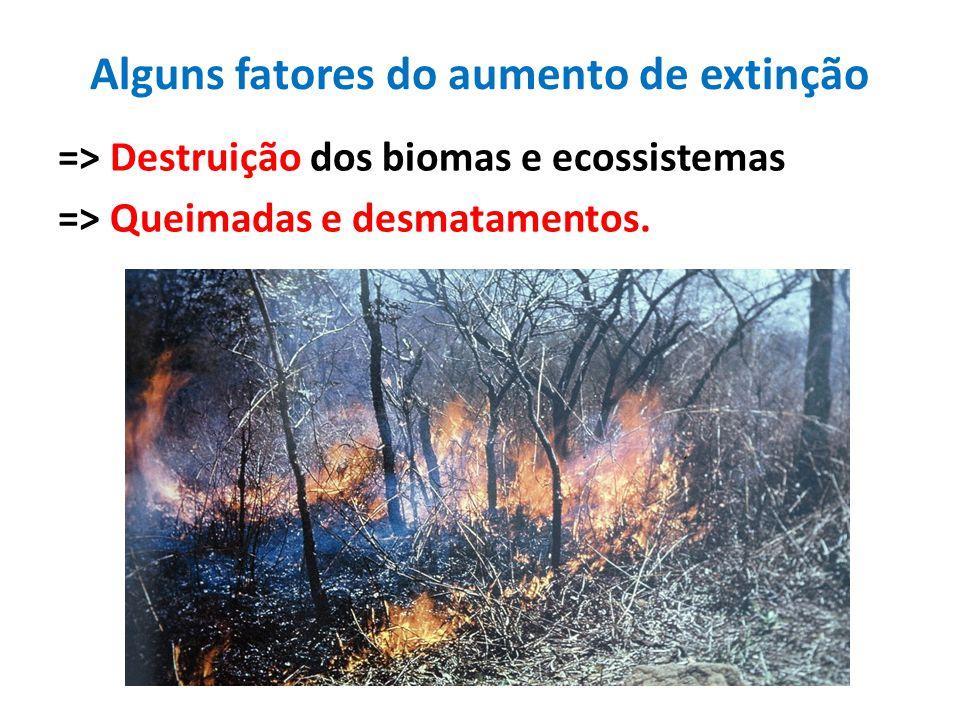Alguns fatores do aumento de extinção => Destruição dos biomas e ecossistemas => Queimadas e desmatamentos.