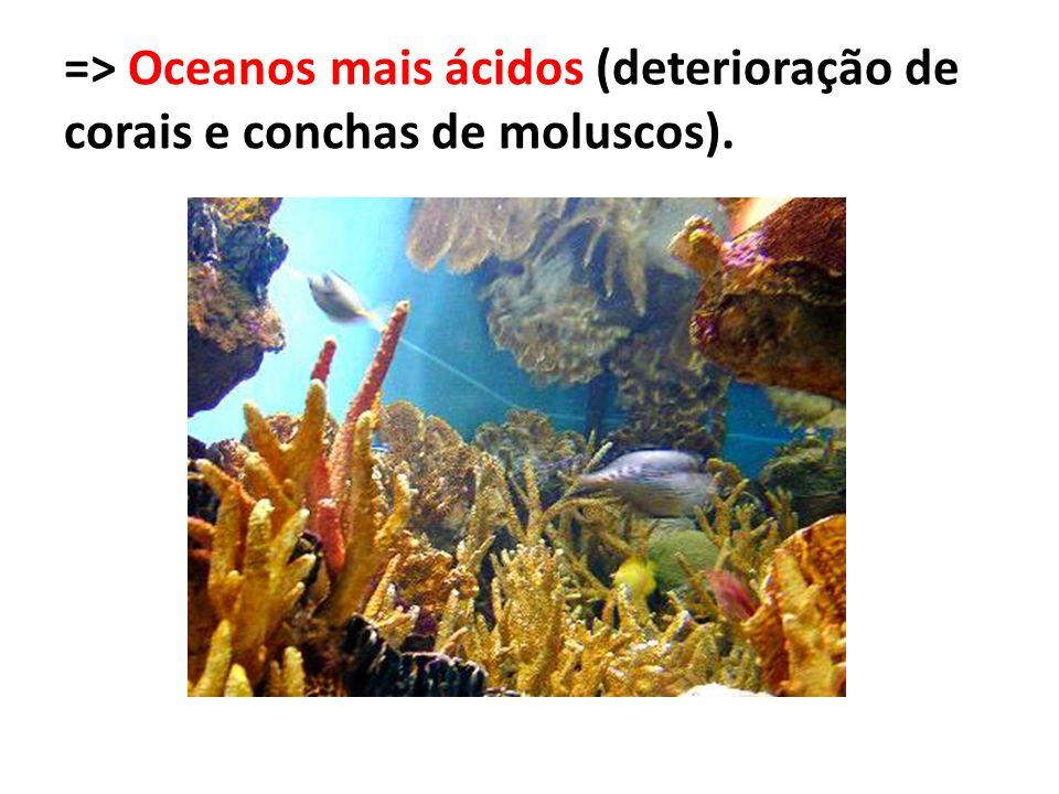 => Oceanos mais ácidos (deterioração de corais e conchas de moluscos).