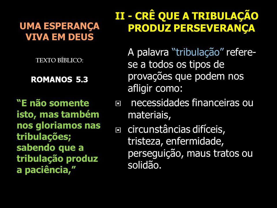UMA ESPERANÇA VIVA EM DEUS II - CRÊ QUE A TRIBULAÇÃO PRODUZ PERSEVERANÇA A tribulação, ao invés de nos levar ao desespero e à desesperança, produz a paciência.