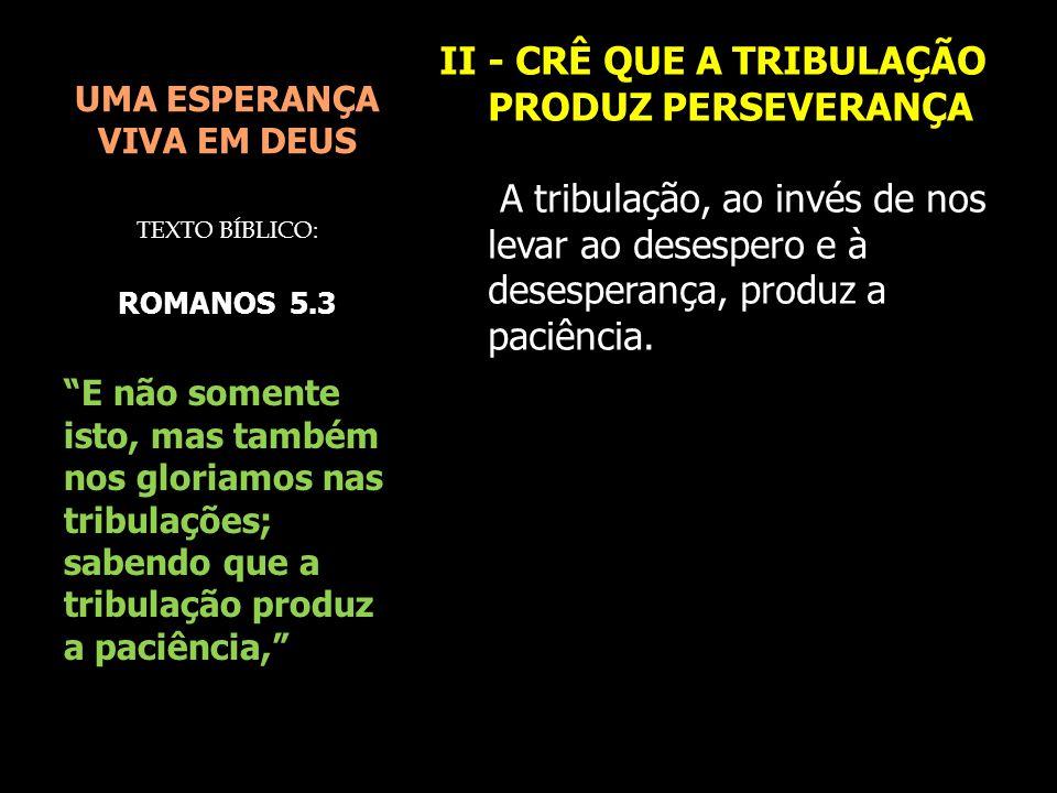 UMA ESPERANÇA VIVA EM DEUS II - CRÊ QUE A TRIBULAÇÃO PRODUZ PERSEVERANÇA A tribulação, ao invés de nos levar ao desespero e à desesperança, produz a p