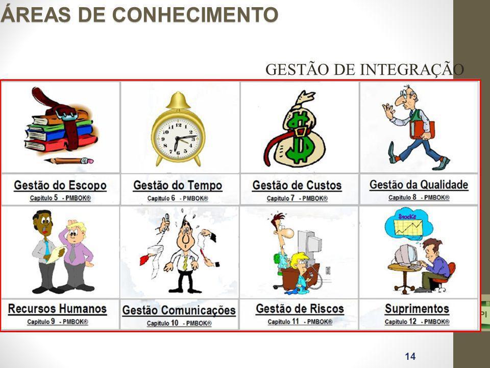 GESTÃO DE INTEGRAÇÃO ÁREAS DE CONHECIMENTO 14