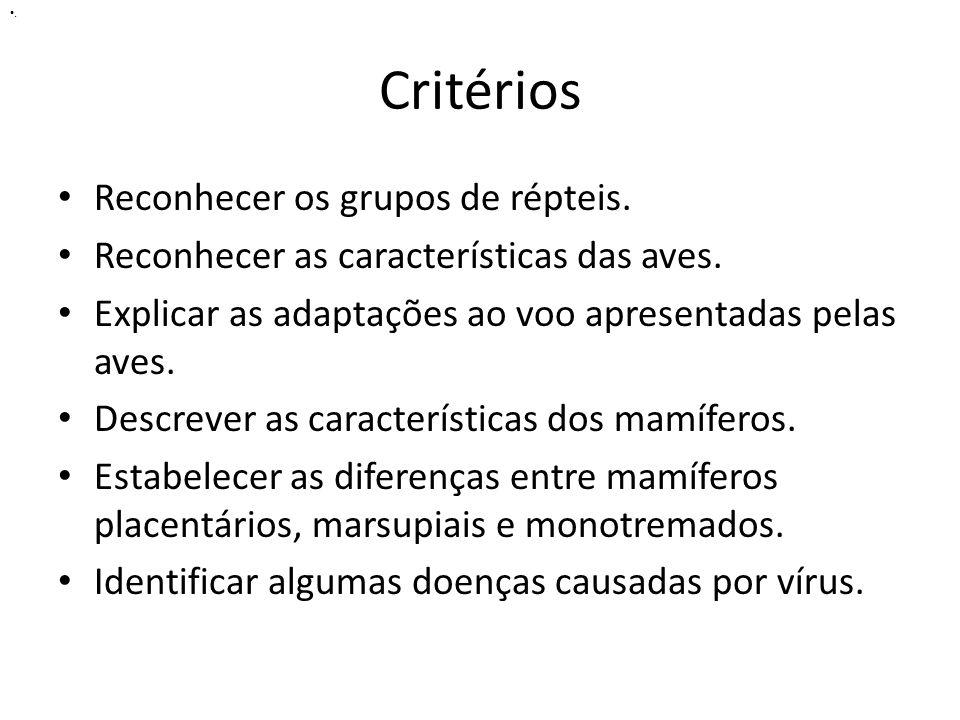 Critérios Reconhecer os grupos de répteis. Reconhecer as características das aves. Explicar as adaptações ao voo apresentadas pelas aves. Descrever as