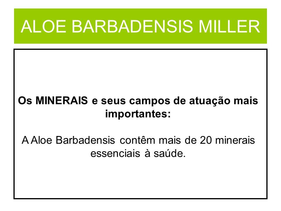 ALOE BARBADENSIS MILLER Os MINERAIS e seus campos de atuação mais importantes: A Aloe Barbadensis contêm mais de 20 minerais essenciais à saúde.
