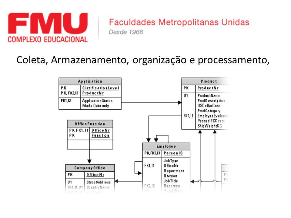 Coleta, Armazenamento, organização e processamento,