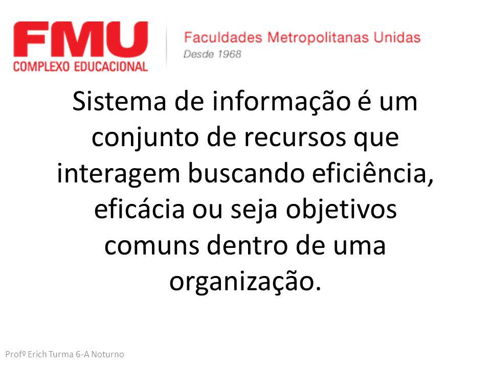 Profº Erich Turma 6-A Noturno Sistema de informação é um conjunto de recursos que interagem buscando eficiência, eficácia ou seja objetivos comuns dentro de uma organização.