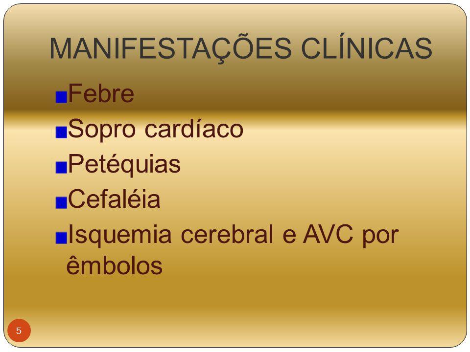 MANIFESTAÇÕES CLÍNICAS Febre Sopro cardíaco Petéquias Cefaléia Isquemia cerebral e AVC por êmbolos 5