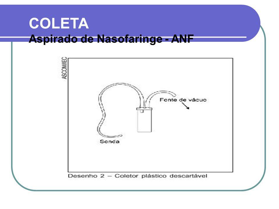 COLETA  Aspirar secreção de nasofaringe das duas narinas (1 mL)  Quantidade de secreção depende de: Etiologia, Fase do quadro clínico Grau de hidratação do paciente.