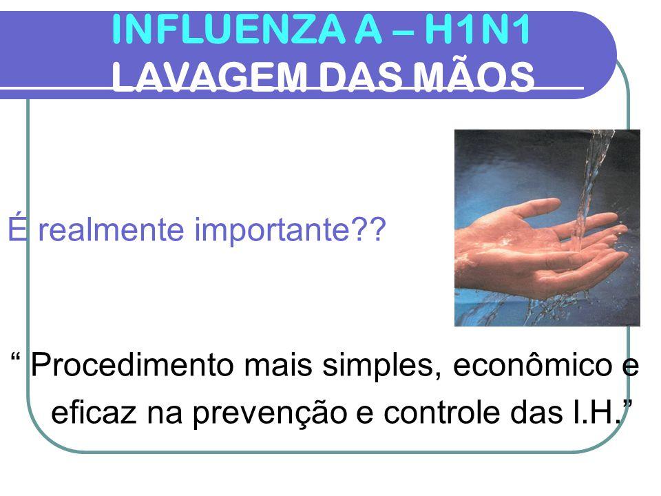 INFLUENZA A – H1N1 DESPARAMENTAÇÃO 5 – Retirar o Par de Luvas Internas Enf.