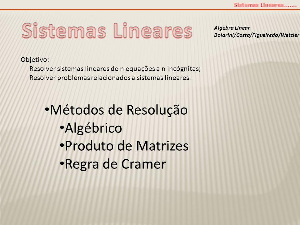 Algebra Linear Boldrini/Costa/Figueiredo/Wetzler Objetivo: Resolver sistemas lineares de n equações a n incógnitas; Resolver problemas relacionados a
