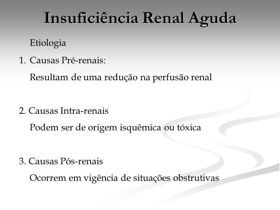 Insuficiência Renal Aguda Etiologia 1.Causas Pré-renais: Resultam de uma redução na perfusão renal 2.