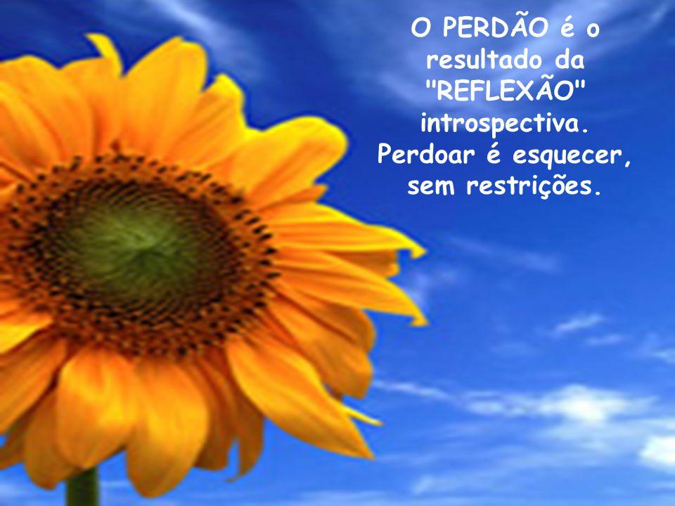 O PERDÃO é o resultado da REFLEXÃO introspectiva. Perdoar é esquecer, sem restrições.
