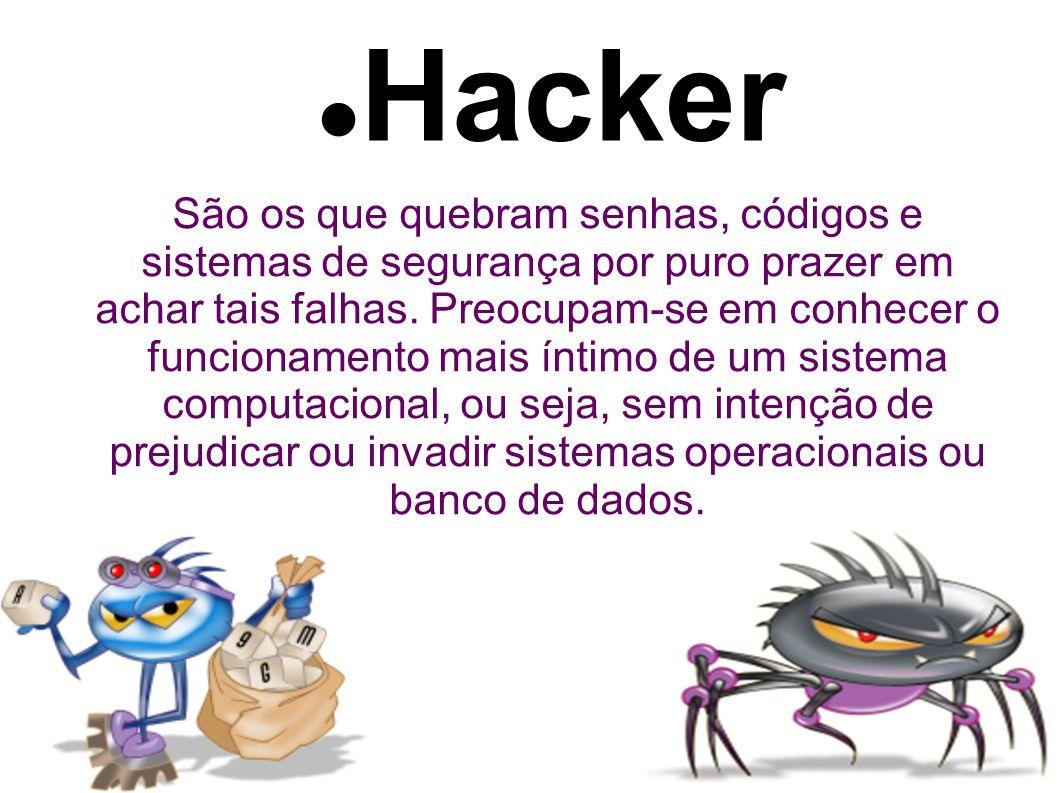 Hacker São os que quebram senhas, códigos e sistemas de segurança por puro prazer em achar tais falhas.
