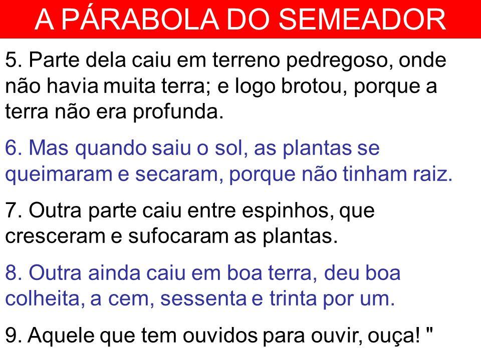A PÁRABOLA DO SEMEADOR 10.