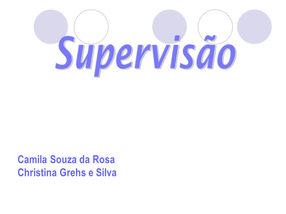 Camila Souza da Rosa Christina Grehs e Silva