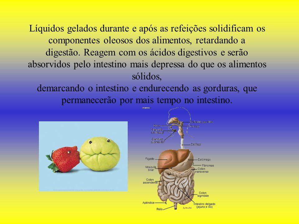 Líquidos gelados durante e após as refeições solidificam os componentes oleosos dos alimentos, retardando a digestão. Reagem com os ácidos digestivos