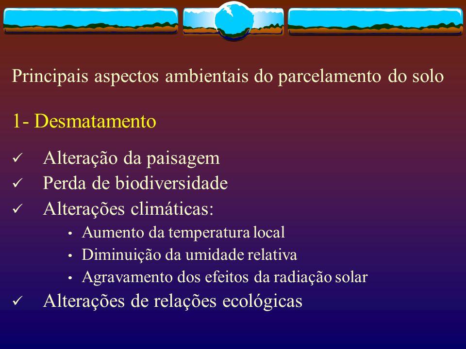 1- Desmatamento Alteração da paisagem Perda de biodiversidade Alterações climáticas: Aumento da temperatura local Diminuição da umidade relativa Agrav
