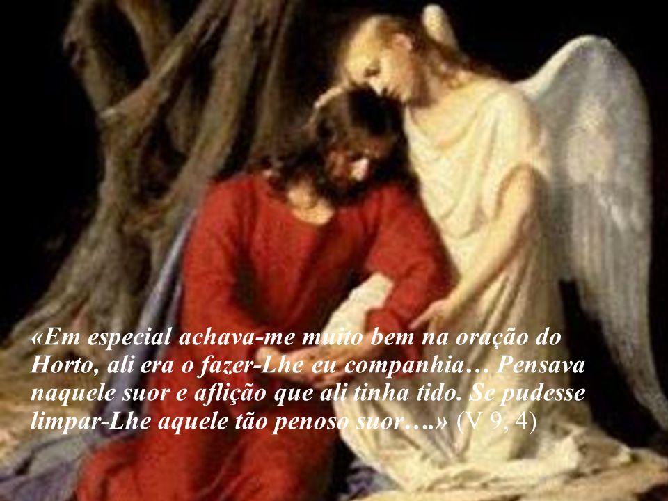 «Em especial achava-me muito bem na oração do Horto, ali era o fazer-Lhe eu companhia… Pensava naquele suor e aflição que ali tinha tido. Se pudesse l