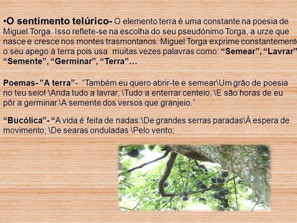 O sentimento telúrico- O elemento terra é uma constante na poesia de Miguel Torga. Isso reflete-se na escolha do seu pseudónimo Torga, a urze que nasc