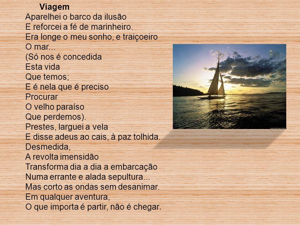Este poema representa a viagem da vida do Homem, não fala de uma viagem concreta.