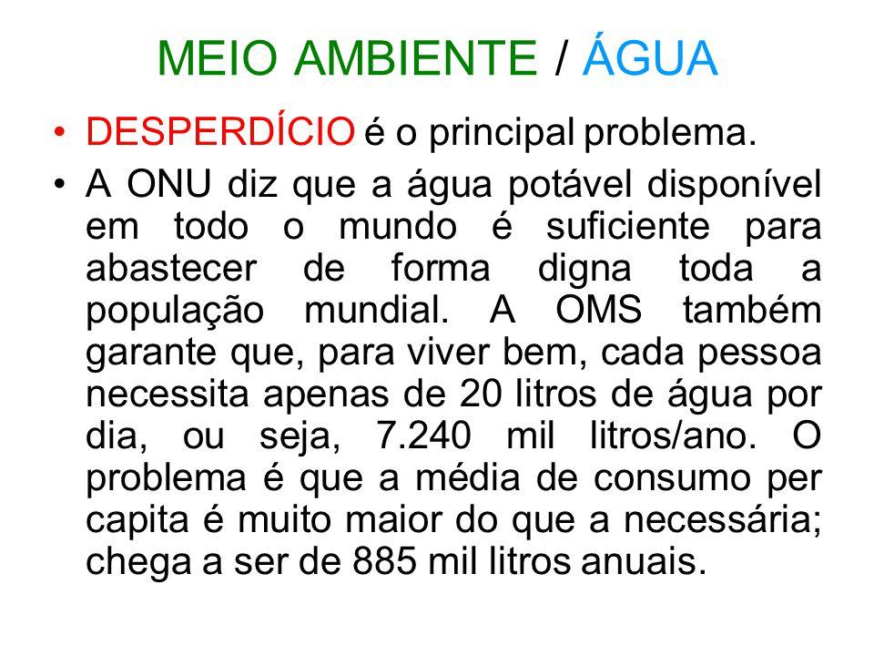 MEIO AMBIENTE / ÁGUA DESPERDÍCIO é o principal problema. A ONU diz que a água potável disponível em todo o mundo é suficiente para abastecer de forma