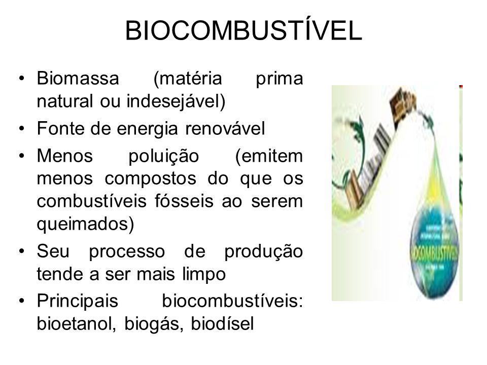 BIOCOMBUSTÍVEL Biomassa (matéria prima natural ou indesejável) Fonte de energia renovável Menos poluição (emitem menos compostos do que os combustívei