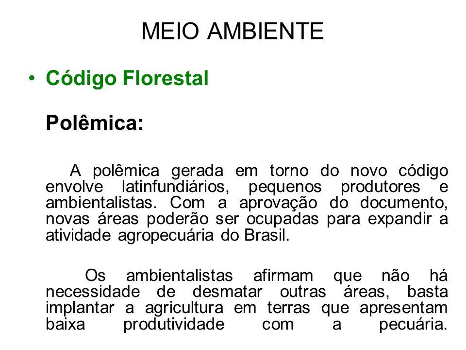 MEIO AMBIENTE Código Florestal Polêmica: A polêmica gerada em torno do novo código envolve latinfundiários, pequenos produtores e ambientalistas. Com