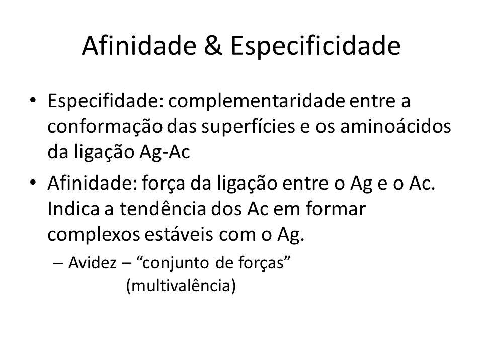 Afinidade & Especificidade Especifidade: complementaridade entre a conformação das superfícies e os aminoácidos da ligação Ag-Ac Afinidade: força da l