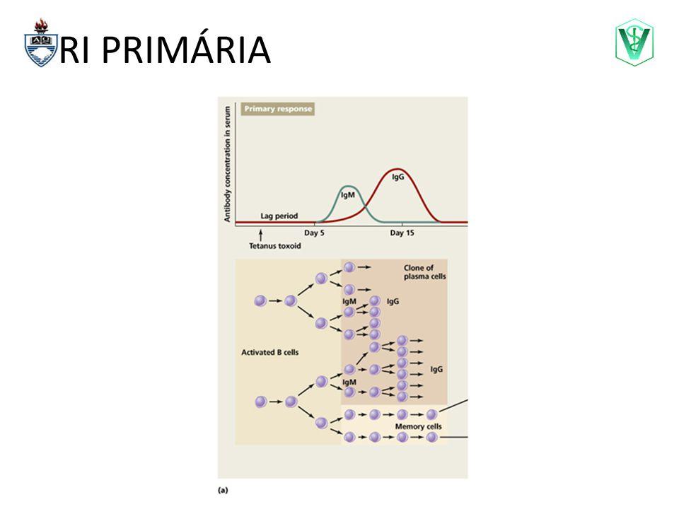 Complemento Via Clássica Complexo Ag-Ac MBPVia Alternativa Componentes bacterianos C1q,r,s C4 C2 MBL, MASP-1, MASP-2 C4 C2 C3 B D C3 convertase C3b C5b C6 C7 C8 C9 C3a C5a C4a COMPLEXO LÍTICO QUIMIOTAXIA OPSONIZAÇÃO