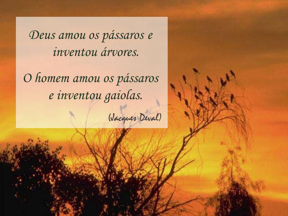 Deus amou os pássaros e inventou árvores.O homem amou os pássaros e inventou gaiolas.