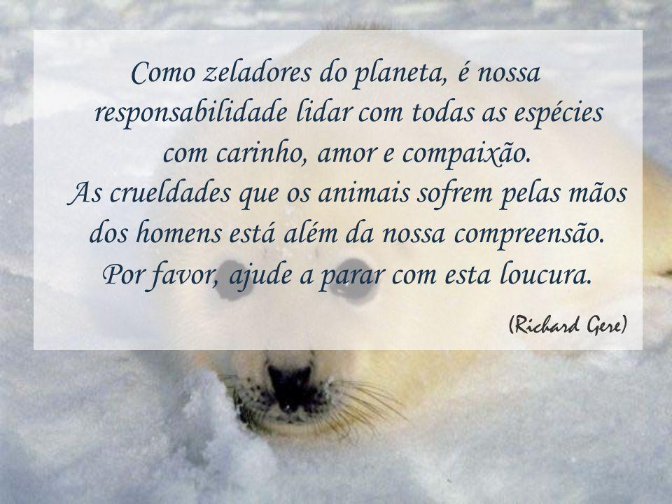 Como zeladores do planeta, é nossa responsabilidade lidar com todas as espécies com carinho, amor e compaixão.
